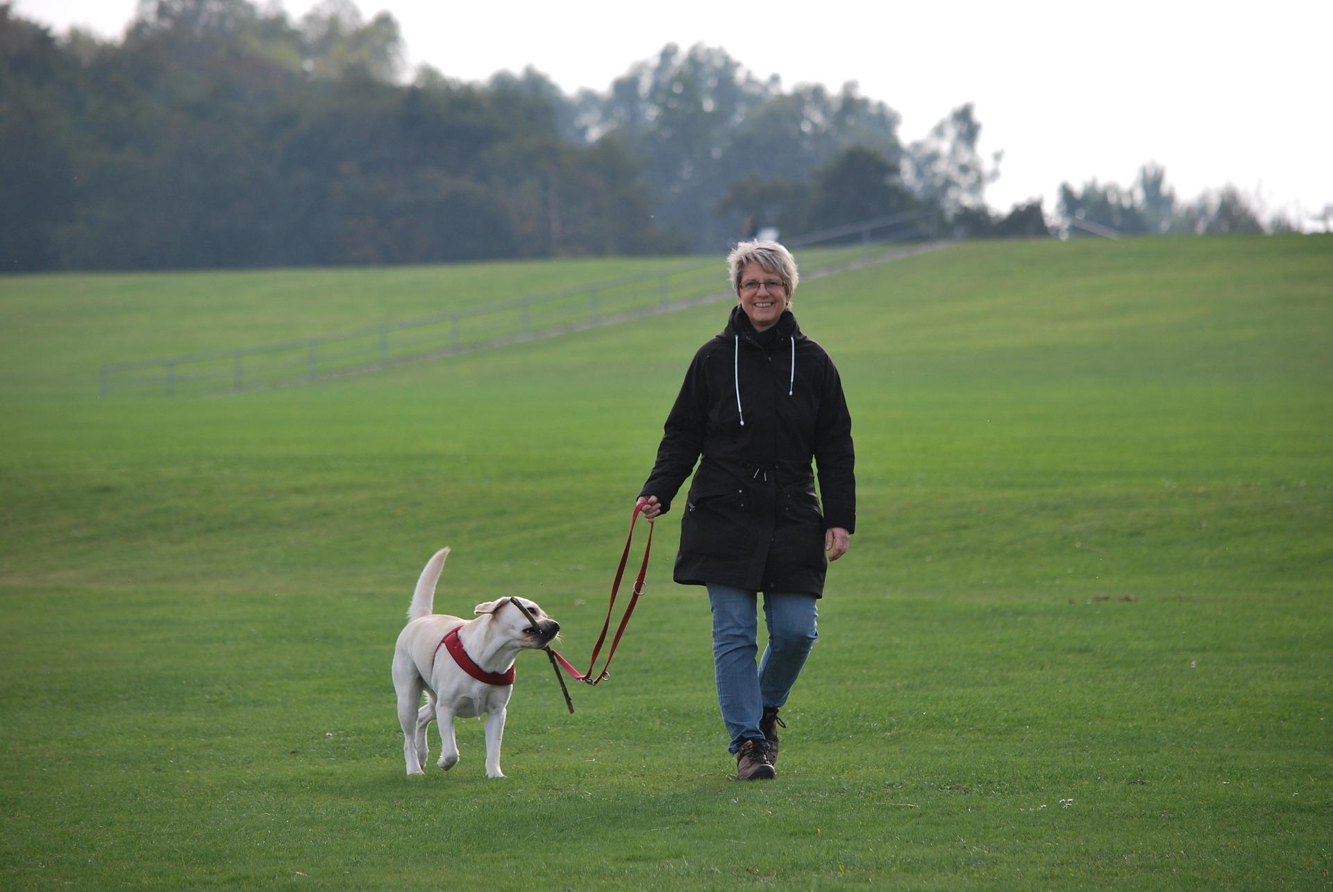 Bij Fysi-co in Wijchen kunt u terecht voor fysiotherapie bij klachten door artrose.